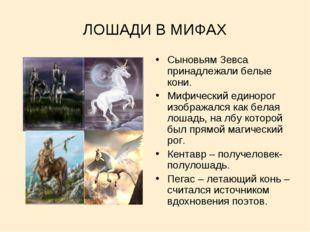 ЛОШАДИ В МИФАХ Сыновьям Зевса принадлежали белые кони. Мифический единорог из
