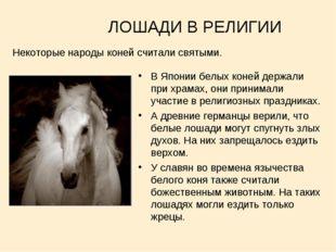 ЛОШАДИ В РЕЛИГИИ В Японии белых коней держали при храмах, они принимали учас