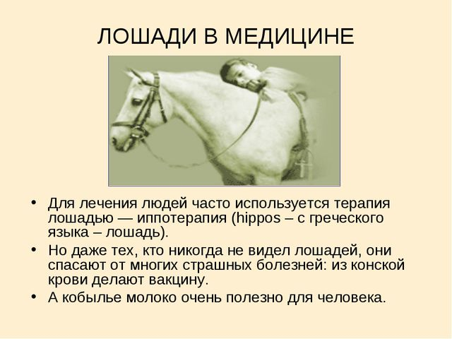 ЛОШАДИ В МЕДИЦИНЕ Для лечения людей часто используется терапия лошадью — иппо...