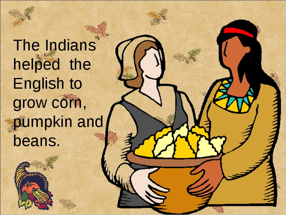 The Indians helped the English to grow corn, pumpkin and beans.