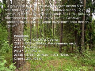 Сосновый лес за сутки выделяет около 5 кг. фитонцидов с 1га. , а лиственный