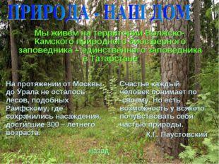 Мы живем на территории Волжско-Камского природного биосферного заповедника –