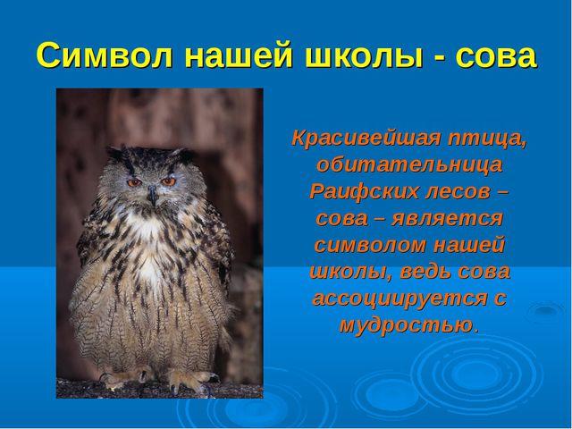 Символ нашей школы - сова Красивейшая птица, обитательница Раифских лесов – с...
