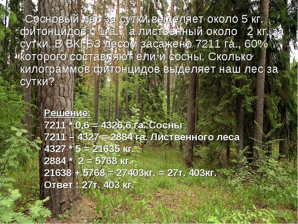 Сосновый лес за сутки выделяет около 5 кг. фитонцидов с 1га. , а лиственный...