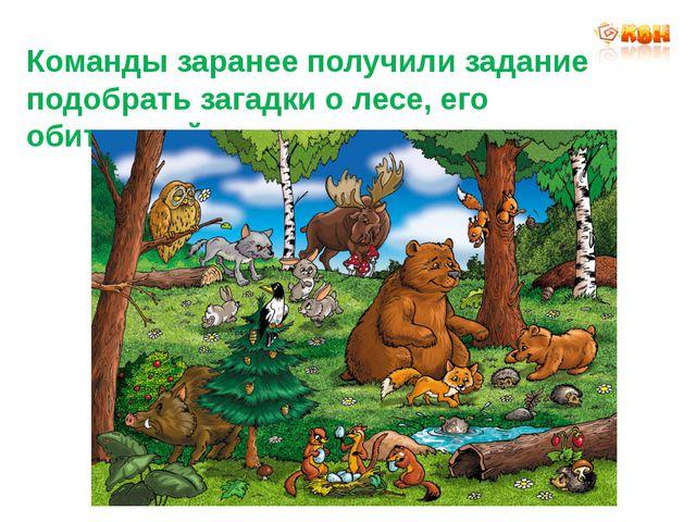 Команды заранее получили задание подобрать загадки о лесе, его обитателей.