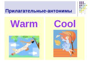 Прилагательные-антонимы Warm Cool