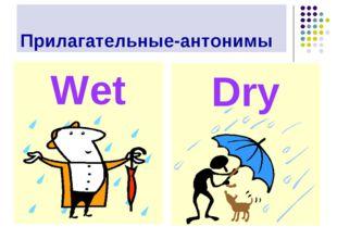 Прилагательные-антонимы Wet Dry
