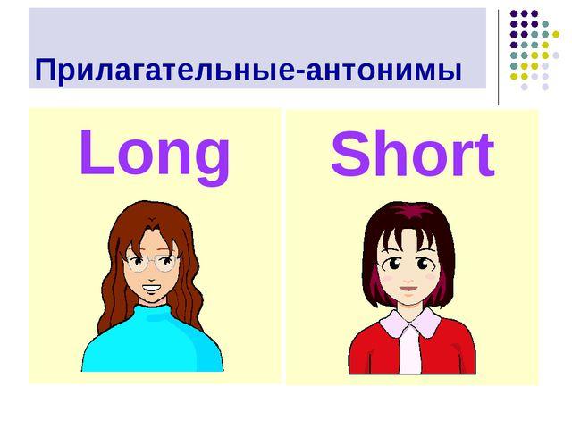 Прилагательные-антонимы Long Short