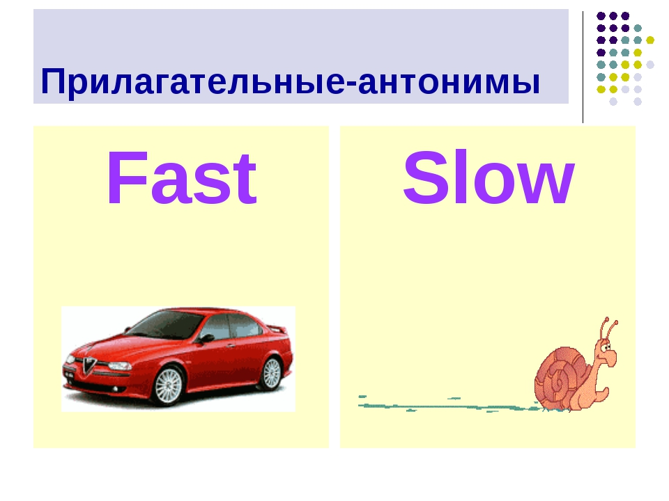 Прилагательные-антонимы Fast Slow