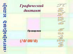 Графический диктант (/\0/\00/\0) Проверяем