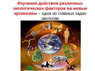 Изучение действия различных экологических факторов на живые организмы – одна
