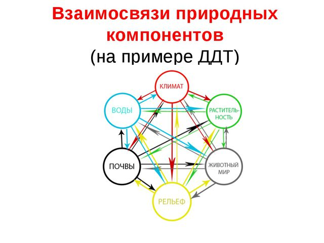 Взаимосвязи природных компонентов (на примере ДДТ)
