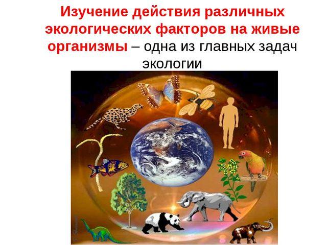 Изучение действия различных экологических факторов на живые организмы – одна...