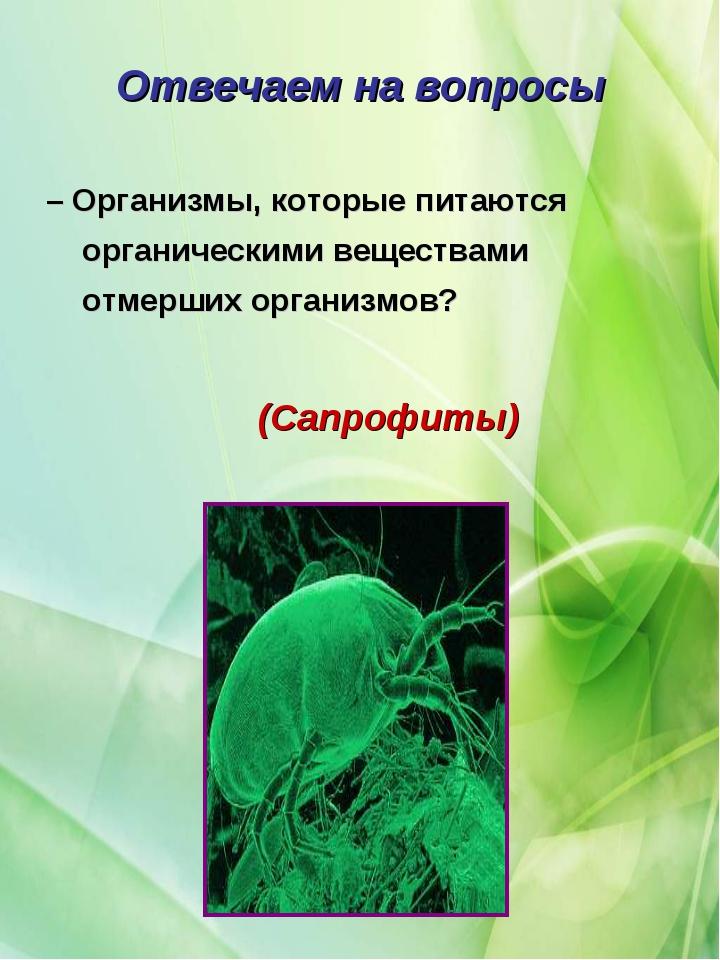 – Организмы, которые питаются органическими веществами отмерших организмов? О...