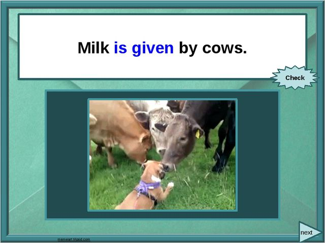 Milk (give) by cows. Milk is given by cows. Check next memeart.tripod.com