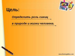 Цель: Определить роль синиц в природе и жизни человека. www.themegallery.com