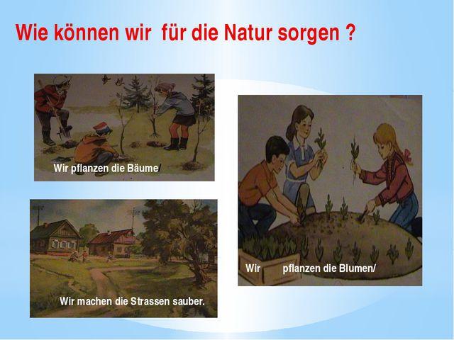 Wie können wir für die Natur sorgen ? Wir pflanzen die Bäume/ Wir pflanzen di...