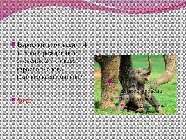 Взрослый слон весит 4 т , а новорожденный слоненок 2% от веса взрослого слона...