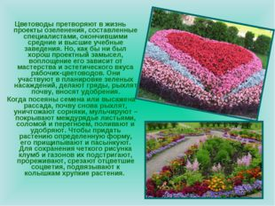 Цветоводы претворяют в жизнь проекты озеленения, составленные специалистами,