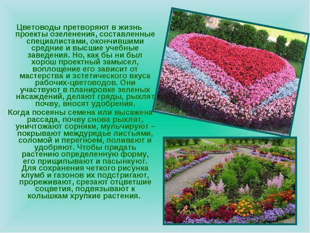 Цветоводы претворяют в жизнь проекты озеленения, составленные специалистами,...