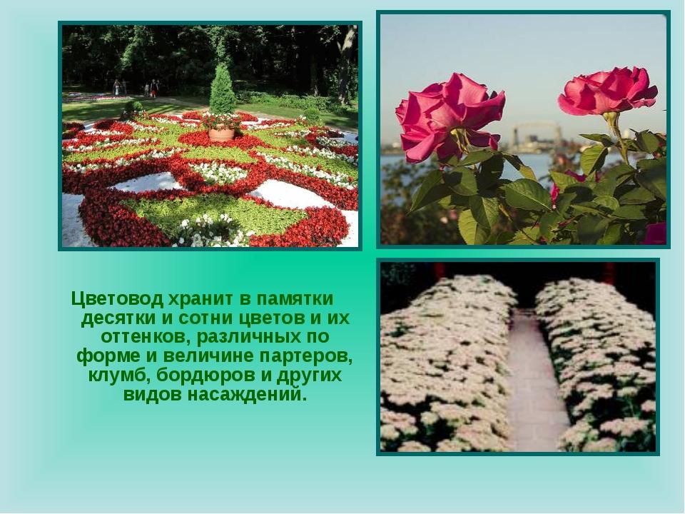 Цветовод хранит в памятки десятки и сотни цветов и их оттенков, различных по...