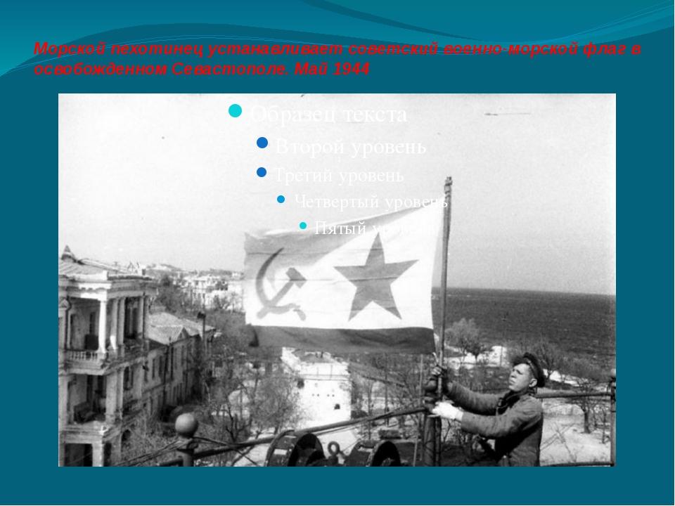 Морской пехотинец устанавливает советский военно-морской флаг в освобожденном...
