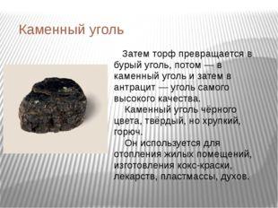 Каменный уголь Затем торф превращается в бурый уголь, потом — в каменный угол