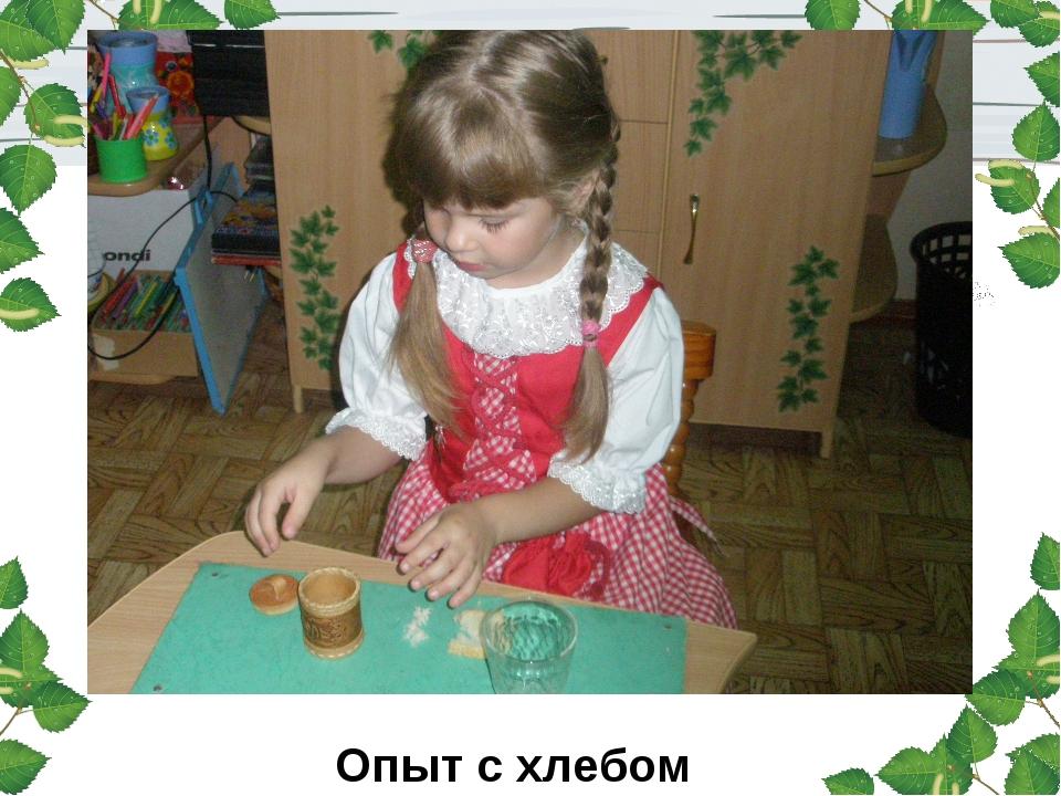 Опыт с хлебом