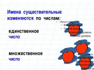 Имена существительные изменяются по числам: единственное число множественное