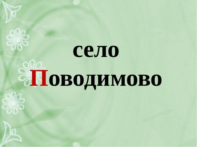 село Поводимово