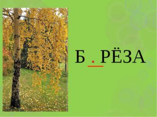 Б . РЁЗА