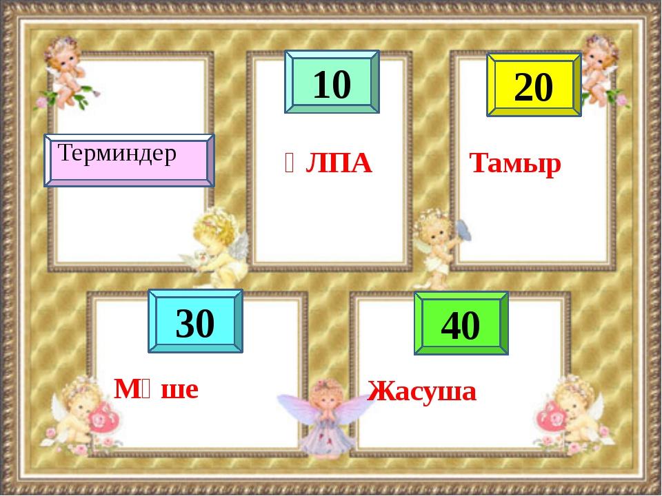 10 40 20 30 ҰЛПА Тамыр Терминдер Жасуша Мүше