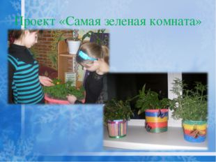 Проект «Самая зеленая комната»