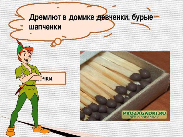 Рыжий зверь в печи сидит, он от злости ест дрова, целый час, а, может два, т...