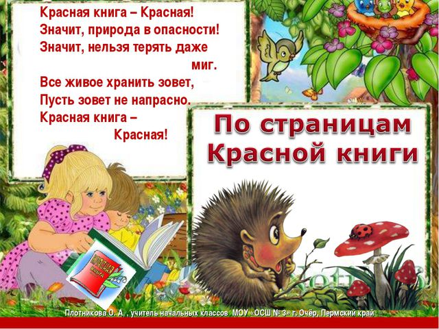 Красная книга – Красная! Значит, природа в опасности! Значит, нельзя терять д...