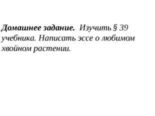 Домашнее задание. Изучить § 39 учебника. Написать эссе о любимом хвойном рас