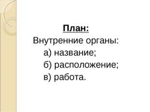 План: Внутренние органы: а) название; б) расположение; в) работа.