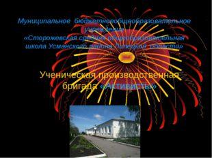 Муниципальное бюджетноеобщеобразовательное учреждение «Сторожевская средняя о