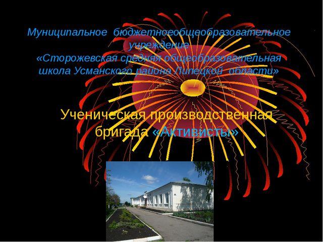 Муниципальное бюджетноеобщеобразовательное учреждение «Сторожевская средняя о...