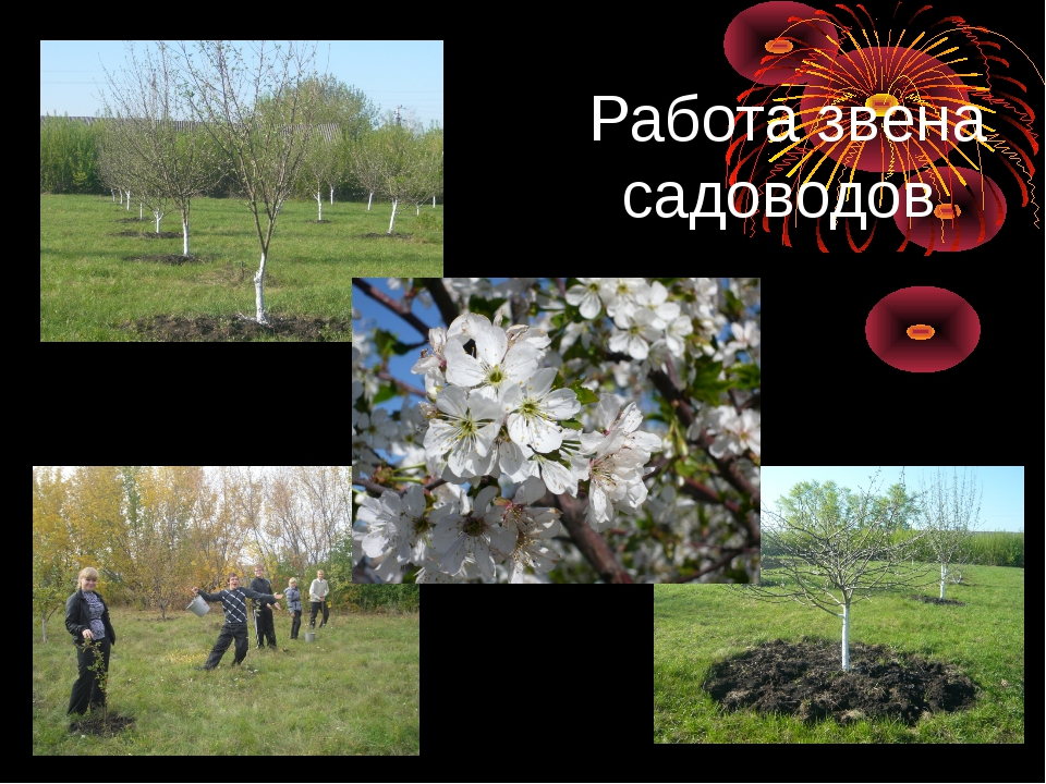 Работа звена садоводов