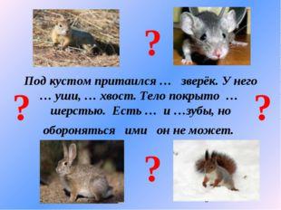 Под кустом притаился … зверёк. У него … уши, … хвост. Тело покрыто … шерстью.