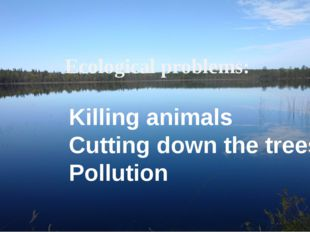 Ecological problems: Killing animals Cutting down the trees Pollution