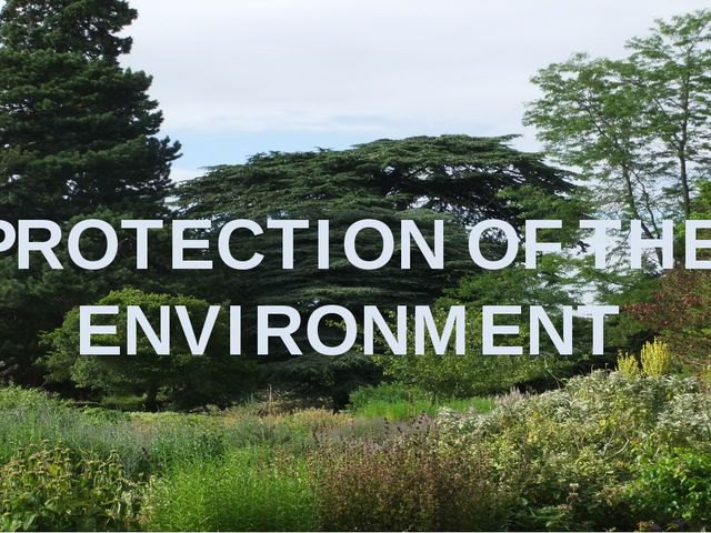 PROTECTION OF THE ENVIRONMENT