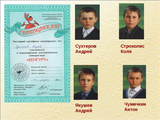 Сухтеров Андрей Якушев Андрей Чумичкин Антон Строколис Коля