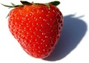 D:\Мои документы\Загрузки\200px-Fragaria_Fruit_Close-up.jpg