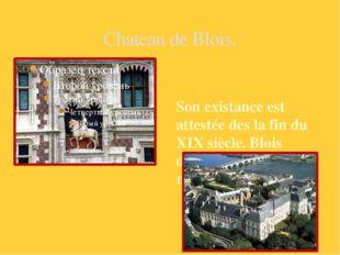 Chateau de Blois. Son existance est attestée des la fin du XIX siècle. Blois