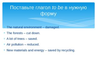 The natural environment – damaged. The forests – cut down. A lot of trees – s