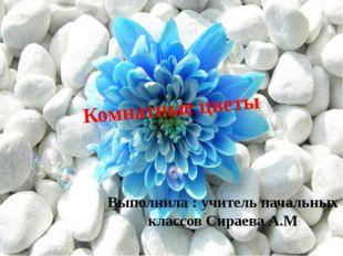 Комнатные цветы Выполнила : учитель начальных классов Сираева А.М