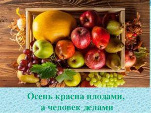 Осень красна плодами, а человек делами