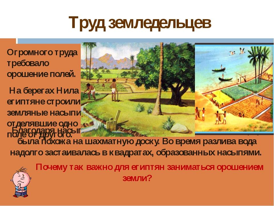 Труд земледельцев Благодаря насыпям вся страна, если смотреть на неё сверху,...